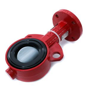 Bray 2in Butterfly Valve