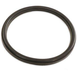 Schwing 10004761 Seal - DN 150