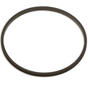 Badger Meter 258050 Head Tetra Seal for 2in and 3in Meters
