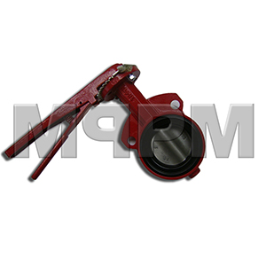 3 Inch Bray Butterfly Valve with Stainless Steel Disc