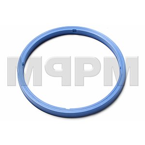 Putzmeister 248347004 Lip seal Ring 165X184, 15X13