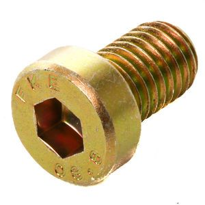 Schwing 10011969 Screw DIN 7984 M10x16-8.8-A2C
