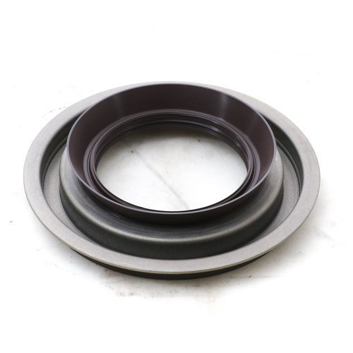 Eaton Dana Spicer 113866 Pinion Oil Seal and Retainer, RS-461