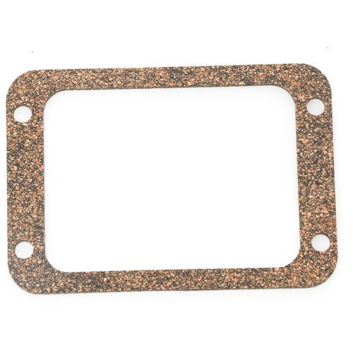 Fabco 427376 TCA Disc Cover Gasket