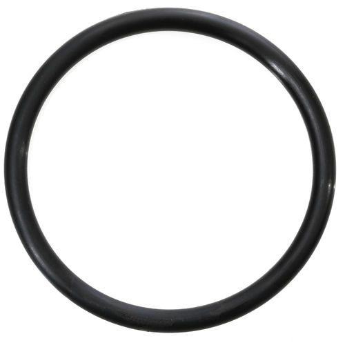 Schwing 10016241 Shaft Seal O-Ring 95 x 8